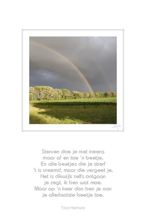 36-regenboog-sterven-doe-je-niet-ineens-toon-hermans-50x75cm-11052012-web